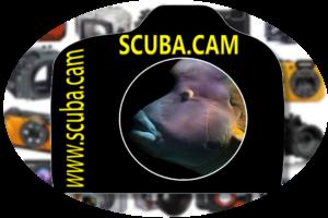 Scuba Cam
