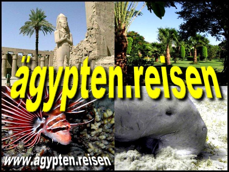 Domain ägypten.reisen